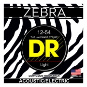 ZEBRA - Acoustic-Electric
