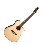 Seagull Artist Peppino Signature CW ELEMENT